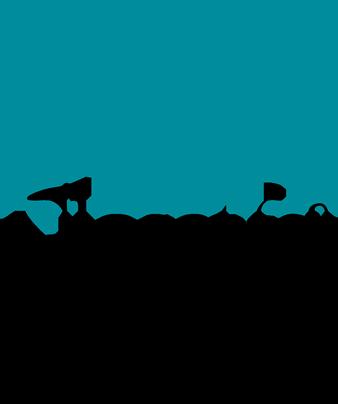 Closet & Storage Concepts